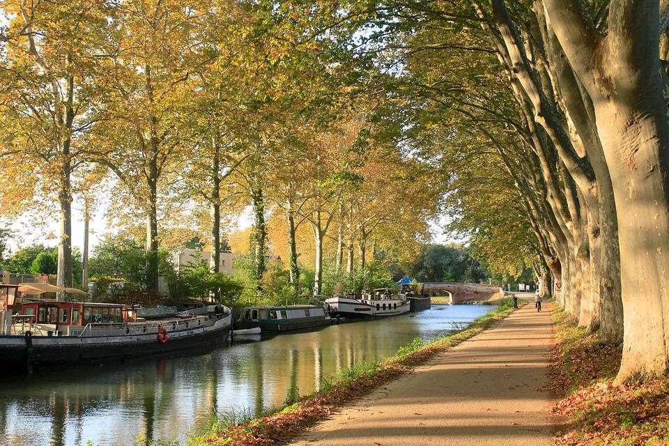 Outono em Toulouse