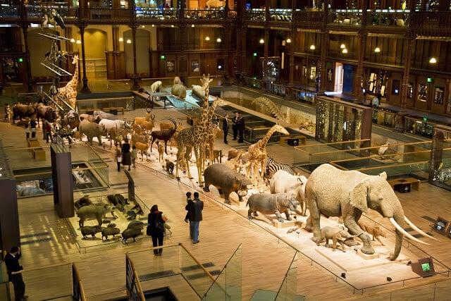 Galeria da Evolução no Museu de História Natural