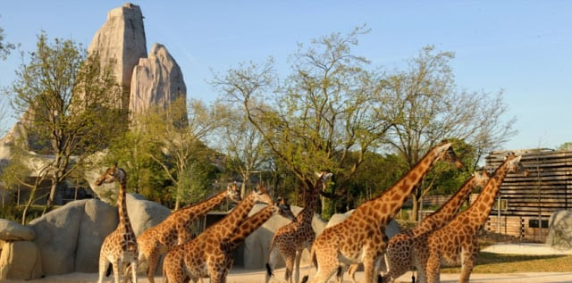 Parque Zoológico de Paris