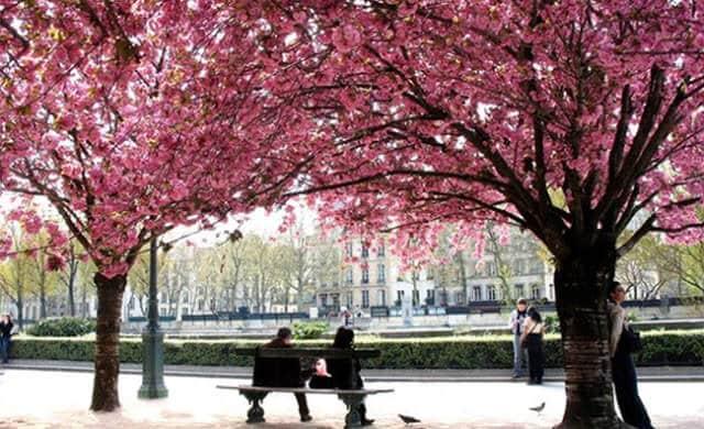 Parques de Paris em Março