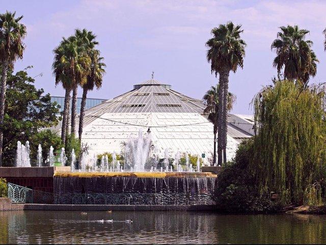Vista do Phoenix Parc Floral