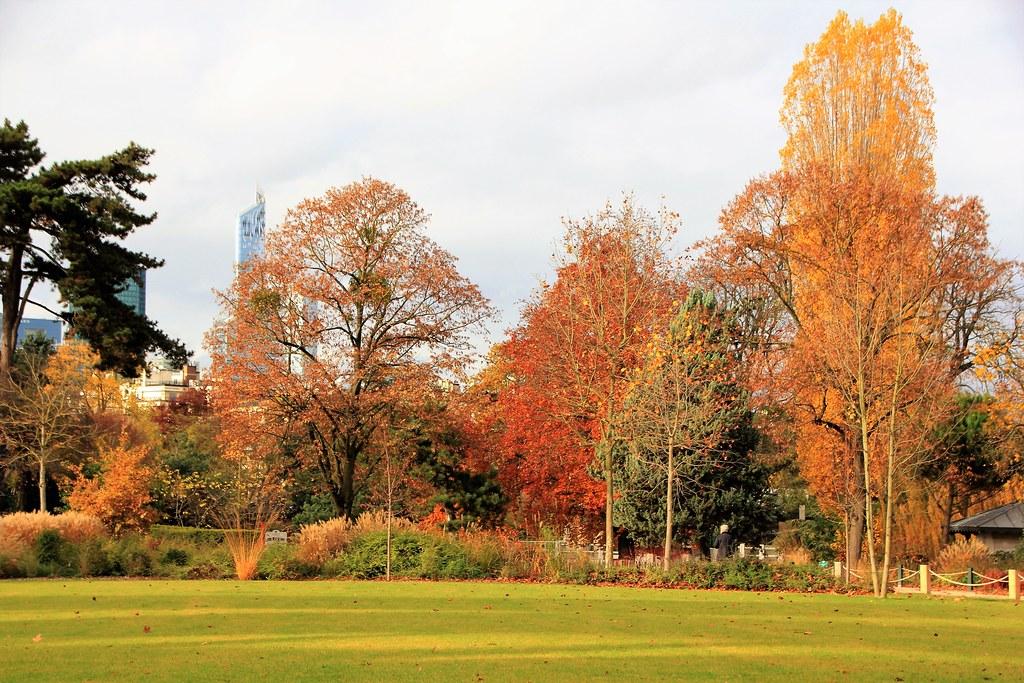 Bois de Boulogne em Lille
