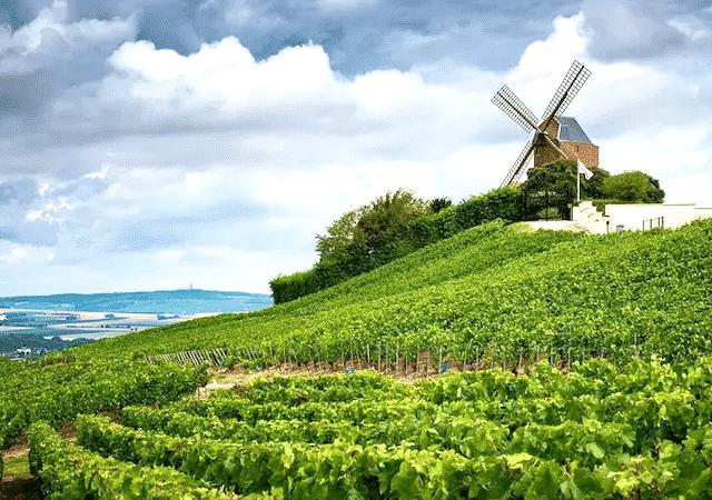 Champagne na França